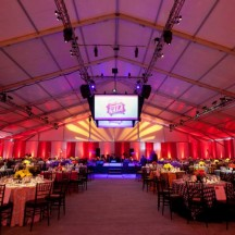 Tolo event-Under The Big Top