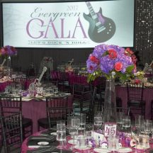 Tolo event-Evergreen Gala – Let's Rock 'N Roll