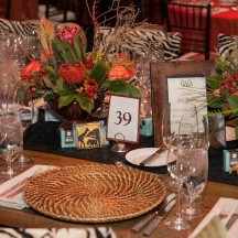 Tolo event-Evening on the Savannah