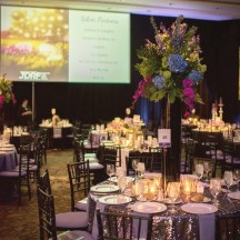 Tolo event-JDRF Pittsburgh Dream Gala